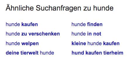 Google Suggest Beispiel